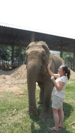 The one, the only, Tilly the elephant. My particular favourite since she shares the same name as my sister! ;)